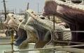 الصورة: الصورة: بالصور.. حديقة ياس المائية  في أبوظبي