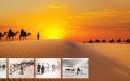 الصورة: الصورة: القوافل الإماراتية تاريخ حكايات محفورة على  حبات  الرمال
