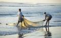 الصورة: الصورة: الصيد والبحر في الإمارات قصص الحاضر وشغف الماضي