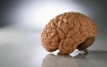 الصورة: الصورة: سدس سكان العالم يعانون من الاضطرابات العصبية