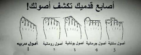 صورة اكتشف أصولك من شكل أصابع قدمك فكر وفن شرق وغرب البيان