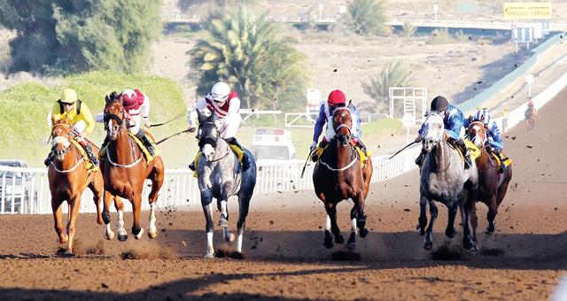 الصورة : سباق مثير متوقع يوم الجمعة بالمضمار العائلي