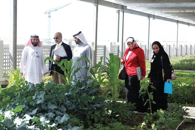 الصورة : خلال استقبال الوفد البحريني
