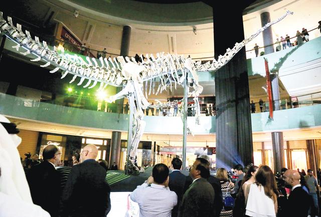 الصورة : هيكل الديناصور الضخم أثناء عرضه في دبي مول تصوير : محمود الخطيب