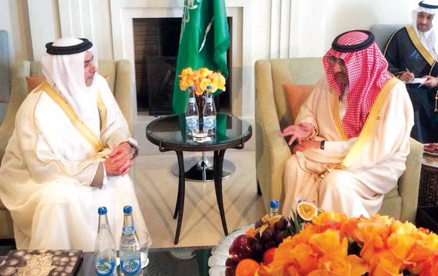 الصورة : سيف بن زايد لدى لقائه وزير الداخلية السعودي