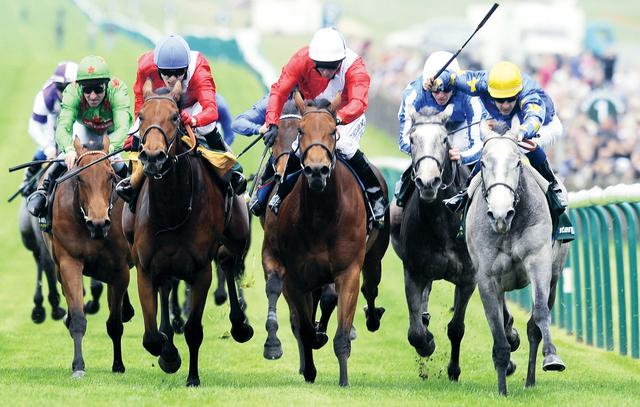 أقوى الخيول العالمية  تتنافس في كأس دبي العالميالبيان