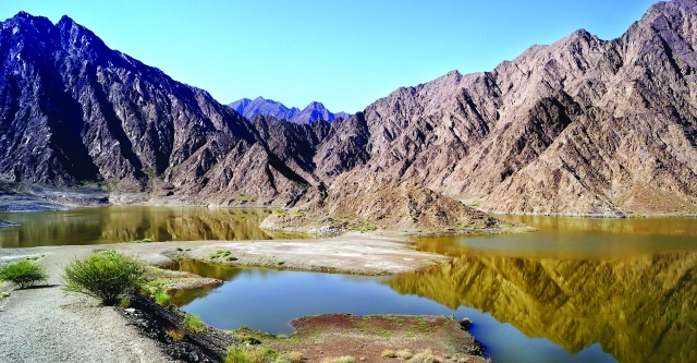 الصورة : محمية حتا جبال ومياه وصون للطبيعة