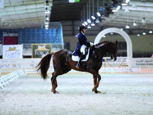 الصورة : ختام بطولة ترويض الخيول شهد منافسة قوية