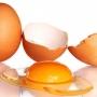 الصورة: الصورة: لهذه الأسباب ينصح الخبراء بتناول البيض النيء