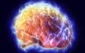 الصورة: الصورة: الحفاظ على قوة دماغنا بالأكل الصحي