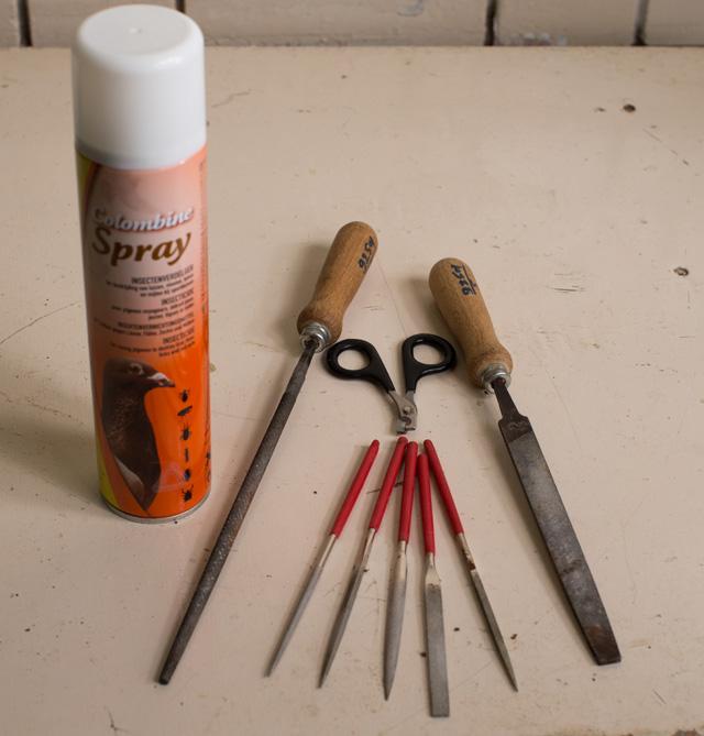الصورة : أدوات النظافة