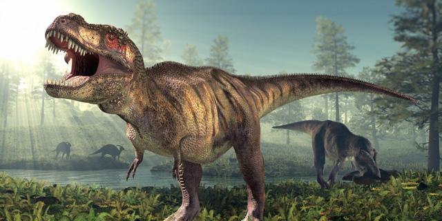 الصورة : ديناصور T-Rex