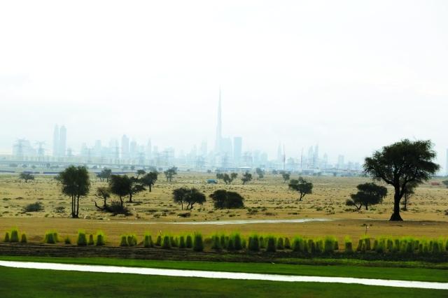 دبي ازدانت بأجواء المطر الجميلة|  تصوير: ناصر بابو