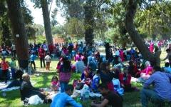 الصورة: الصورة: استعدادات مكثفة لاحتفالات «شم النسيم» في مصر