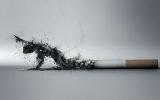 الصورة: الصورة: التدخين وباء قاتل