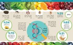 الصورة: الأغذية المعدلة وراثياً خـطرة وتسبب أمراضاً مزمنة