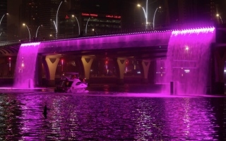 الصورة: أناقة دبي