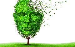 الصورة: 90 % من الأمراض النفسية يمكن علاجهـا في حال التشخيص المبكر