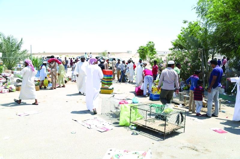 «بلدية أبوظبي» تحرّر 144 مخالفة ضد «الباعة الجائلين» في الوثبة - البيان
