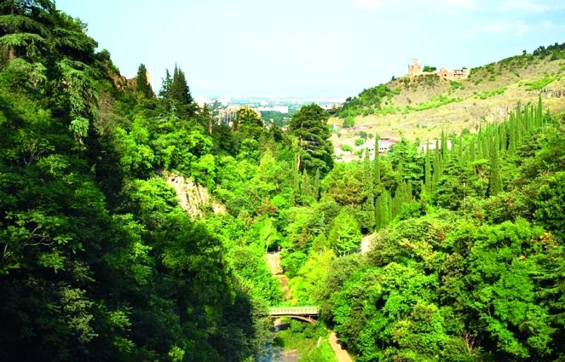 حديقة النّباتات الوطنيّة