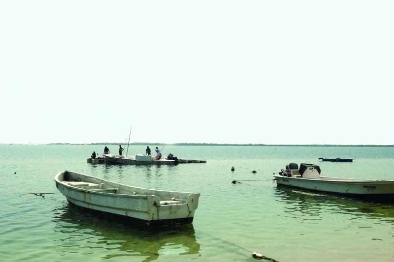 الصورة : رحلات الصيد في خور أم القيوين | من المصدر
