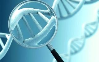 الصورة: الصورة: حبيبة الصفار: علوم الجينوم مستقبل النهضة الصحية والسلامة البشرية