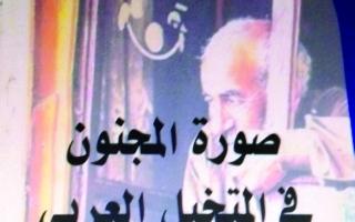 الصورة: الصورة: «صورة المجنون في المتخيَّل العربي».. تاريخ وشخصيات