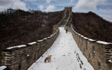 الصورة: أشهر 5 خطوط دفاعية خدعت أصحابها عبر التاريخ