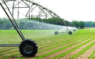 الصورة: 16 % مساهمة الإمارات في «العربية للاستثمار والإنماء الزراعي»