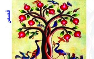 الصورة: الصورة: «شجرة الرمان» قلق المعرفة   وحيرتها الدائمة