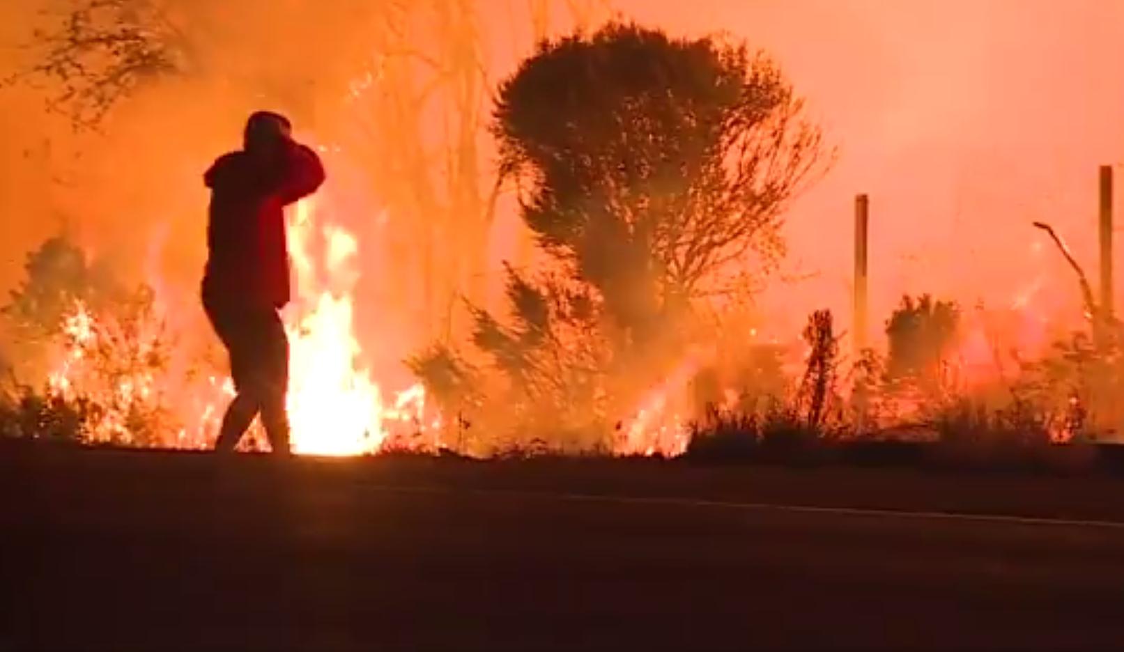 حرائق كاليفورنيا.. شاب يخاطر بحياته من أجل إنقاذ أرنب