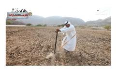 الصورة: ح4: قرية المَيّة في الفجيرة.. الزراعة بين قمم الجبال