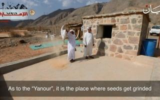 الصورة: شاهدوا ماذا كان يغني المزارعون الإماراتيون احتفاء بموسم الحصاد