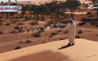 الصورة: الصورة: ح5: بطحا آل علي.. كنوز طبيعية وسط الصحراء