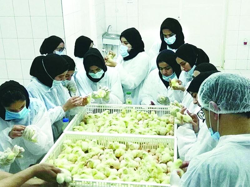 الطالبات في مختبر فحص الدواجن