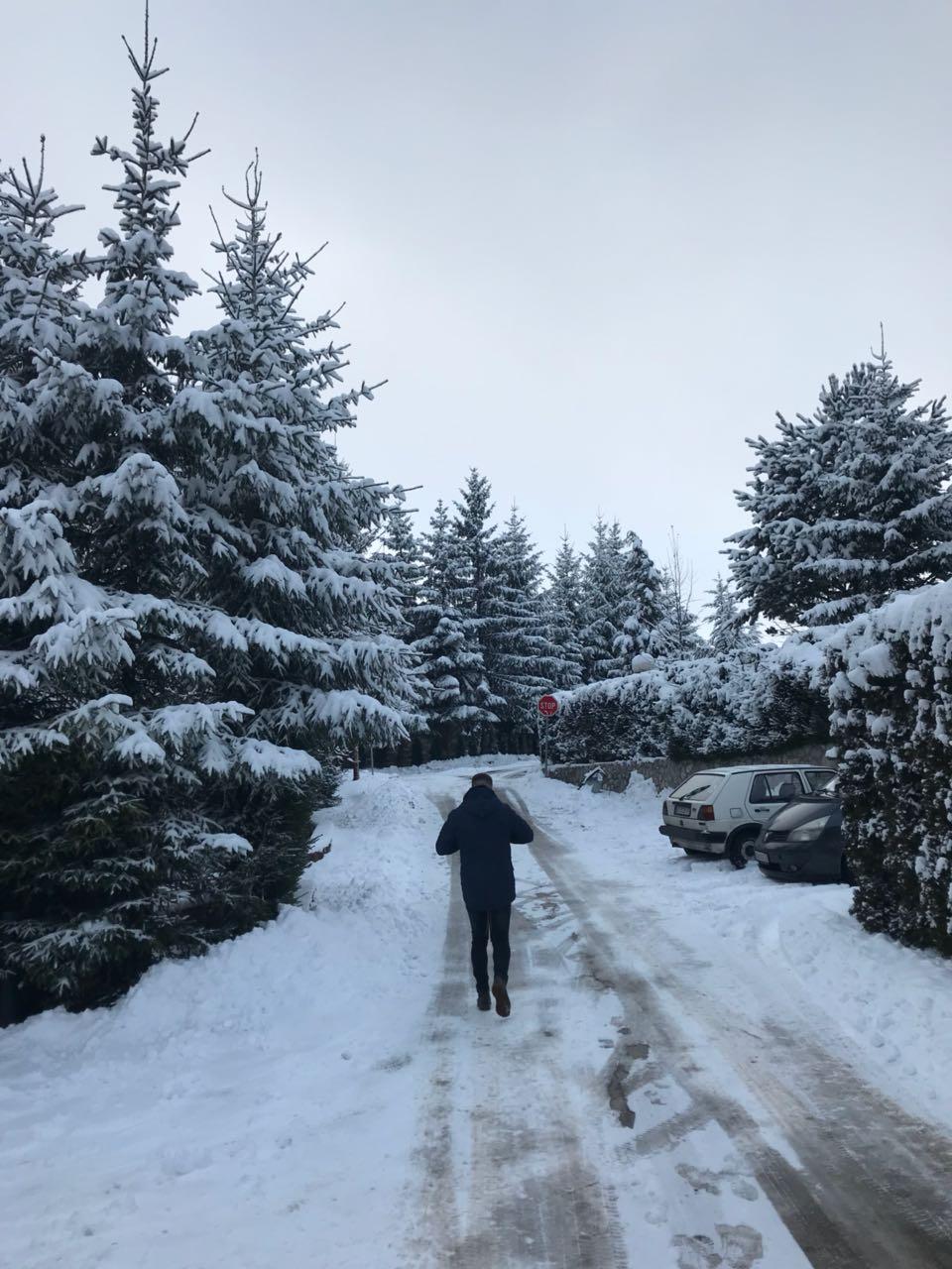 زلاتيبور في صربيا.. جوهرة على ارتفاع 1000 متر