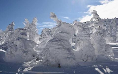 الصورة: وحوش الثلج.. مناظر خلابة في اليابان
