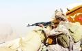 الصورة: انتصارات للشرعية وحشد عسكري في تعز