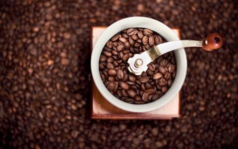 الصورة: ما الكمية الصحية من القهوة يومياً؟
