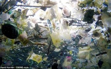 الصورة: شاهد.. جنة الجزر الإستوائية «بالي» تتحول إلى مكب للنفايات