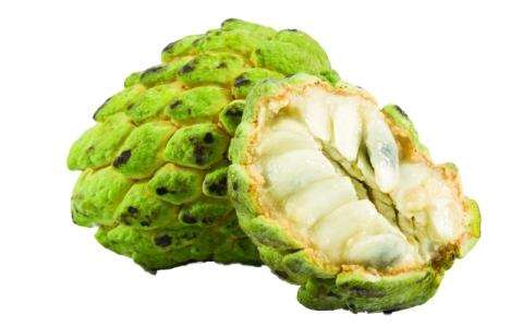 الصورة: القشطة.. فاكهة تكافح مسببات السرطان