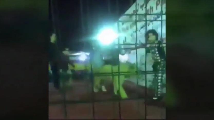 بعد مهاجمة أسد لطفلة.. القبض على مدير فعالية جدة