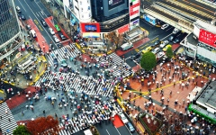 الصورة: تراجع ثقة الشركات في اليابان