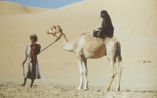 الصورة: جناح مهرجان «أم الإمارات» يحتفي بإنجازات المرأة