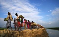الصورة: الأمم المتحدة توجّه نداءً لجمع مليار دولار للروهينغا