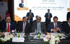 الصورة: نقلة نوعية في العلاقات الاقتصادية الإماراتية المصرية