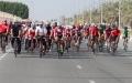 الصورة: الفلاسي: «صحة دبي» جاهزة لسباق  زايد للدراجات