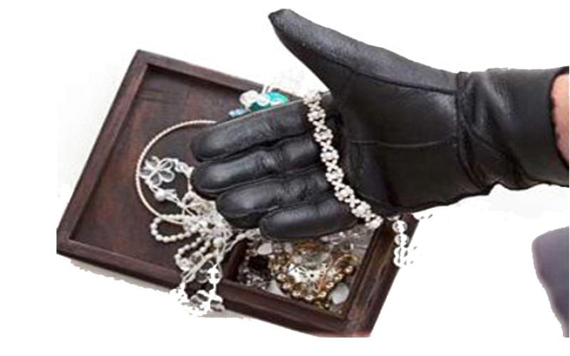 الصورة: يسرقان مجوهرات من فيلا موظفة خليجية بـ 1.2 مليون درهم