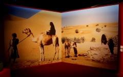 الصورة: مهرجان «أم الإمارات» ينطلق على كورنيش أبوظبي اليوم