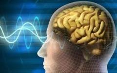 الصورة: علماء بريطانيون يطورون جهازاً لمسح المخ داخل خوذة